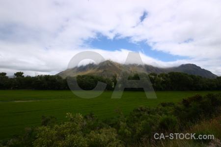 New zealand field sky grass cloud.