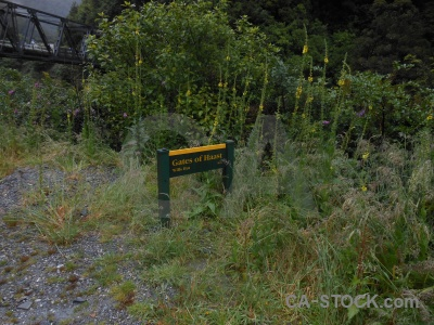 New zealand haast river sign south island grass.