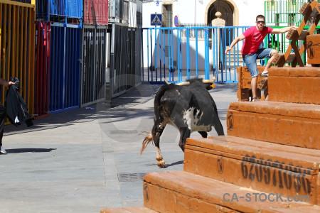 Orange blue bull running animal spain.