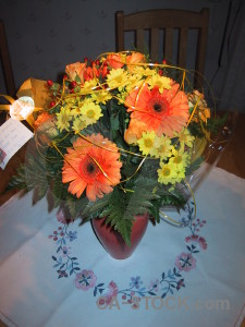 Orange flower yellow plant vase.