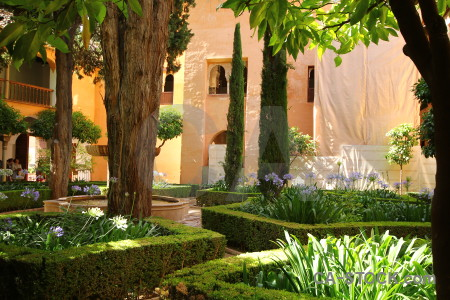 Palace brown garden fortress alhambra.