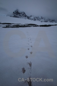 Palmer archipelago track sky antarctica mountain.