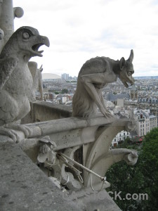 Paris notre dame europe france gargoyle.