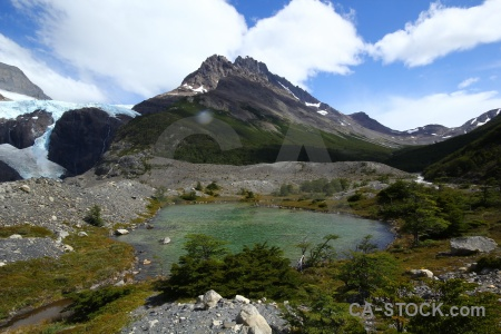 Patagonia cloud torres del paine trek tree.
