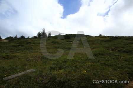 Patagonia mountain tree south america cloud.