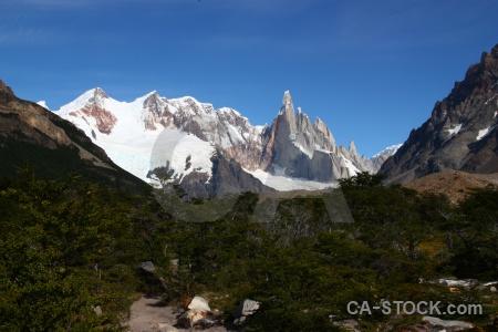 Patagonia tree el chalten snowcap trek.