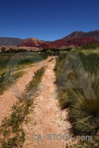 Path sky jujuy salta tour grass.