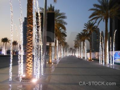 Path uae sky middle east palm tree.