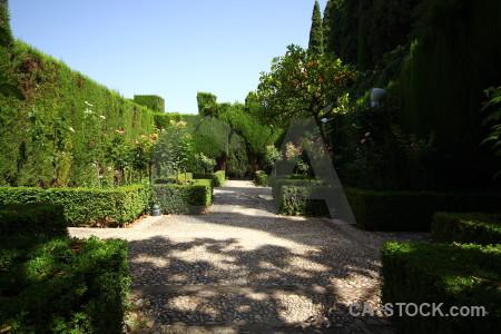 Pathway granada alhambra garden park.