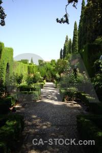 Pathway palace garden green granada.