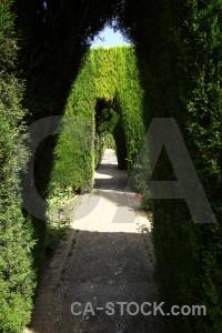 Pathway park garden alhambra la de granada.