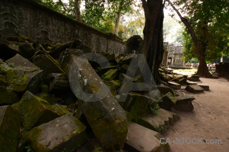 Person tomb raider buddhism ta prohm cambodia.