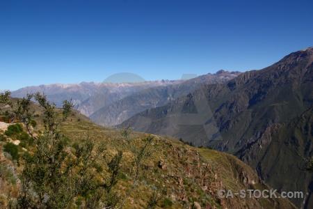 Peru grass bush landscape sky.