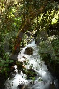Peru river inca trail rio wayruru rock.