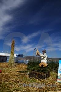 Peru sky south america andes plant.