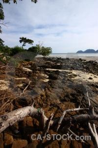 Phi phi island asia thailand sea rock.