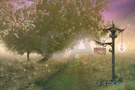 Pink fantasy backgrounds green premade.