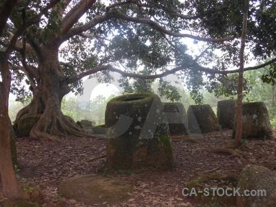 Plain of jars asia stone megalithic moss.