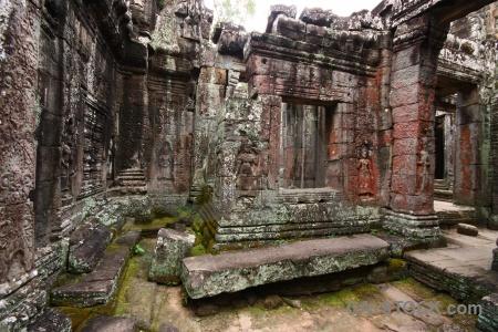 Plant lichen buddhist sky ruin.