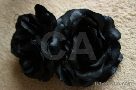 Plant silk black rose flower.