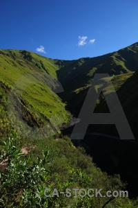 Quebrada de escoipe valley grass altitude argentina.