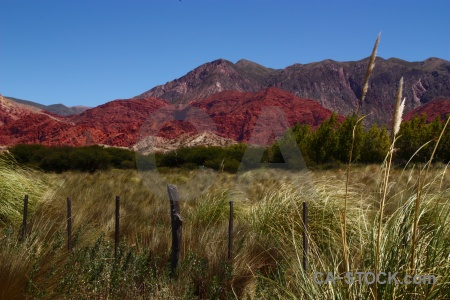 Quebrada de humahuaca unesco pampas grass mountain jujuy.
