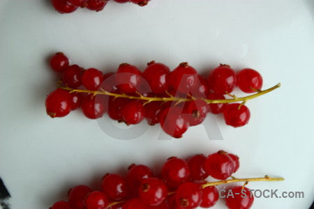 Red food white fruit berry.