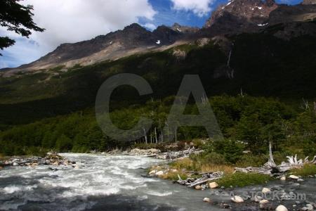 River tree los perros river circuit trek patagonia.