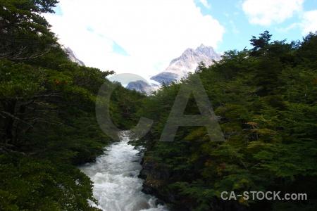 River trek water tree mountain.