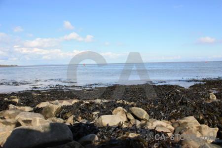 Rock coast landscape seaweed.