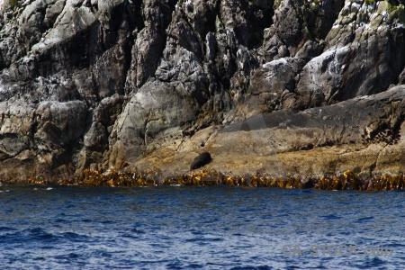 Rock fiordland new zealand doubtful sound fiord.