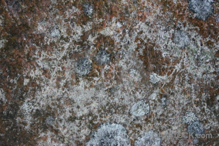 Rock gray texture stone.