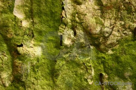 Rock green stone texture.
