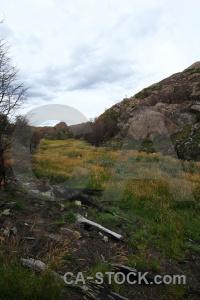 Rock tree cloud chile grass.