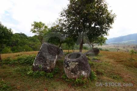 Rock tree plain of jars southeast asia megalithic.