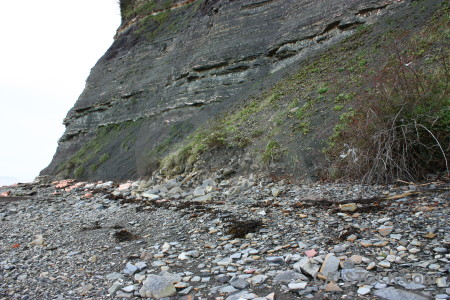 Rock white cliff.