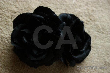 Rose silk plant flower black.