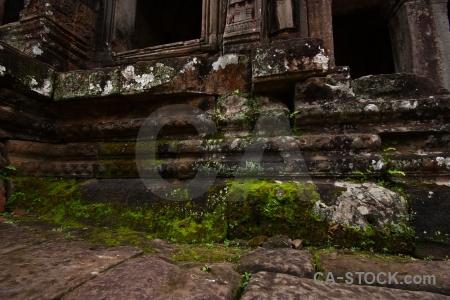 Ruin fungus buddhist southeast asia prasat bayon.