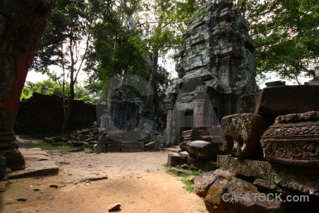 Ruin fungus tomb raider temple khmer.