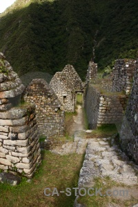 Ruin inca grass andes winay wayna.