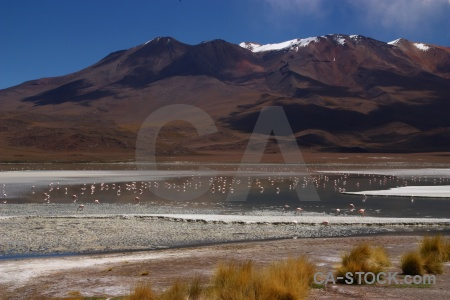 Salt lake laguna hedionda snowcap water south america.