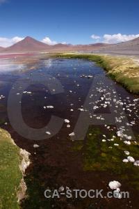 Salt water andes sky laguna colorada.