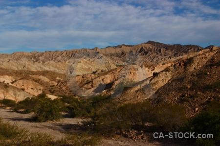 Salta tour 2 quebrada de las flechas landscape bush rock.
