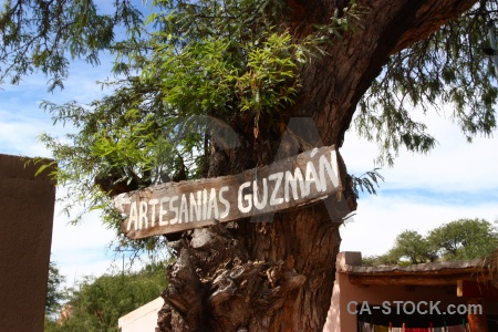 Salta tour 2 sky tree argentina cachi.