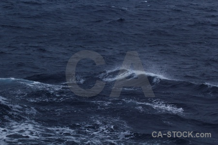 Sea drake passage antarctica cruise wake spray.