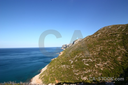Sea rock plant spain europe.