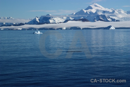 Sea south pole antarctic peninsula landscape animal.