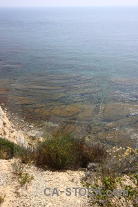 Sea spain rock europe plant.