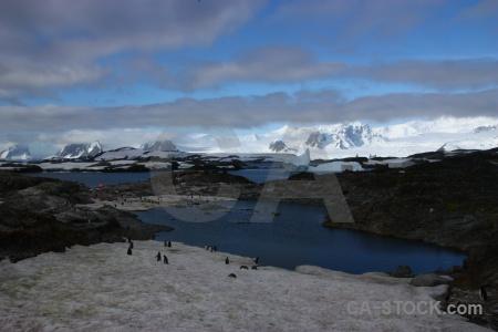 Sea wilhelm archipelago ice antarctica galindez island.