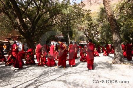 Sera monastery asia tibet buddhism monk.